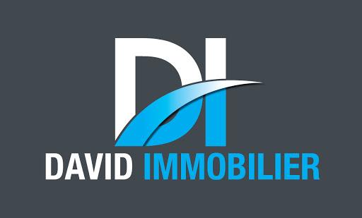 Logo de David IMMOBILIER