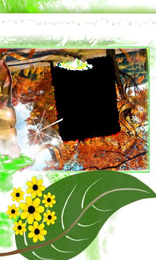 freeze Photo flower Frames