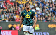 Springbok lock Eben Etzebeth will start on the bench against Canada on Tuesday while he waits for the NPA to decide whether he will face criminal charges for an alleged assault.