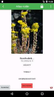Atlas roślin polskich - náhled