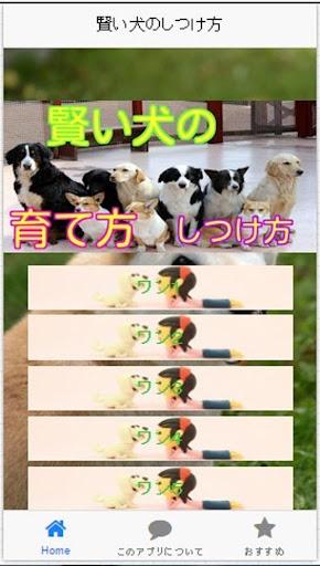 賢い犬の育て方 犬のしつけ方-犬の気持ちがわかるアプリ