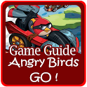 Guide Angry Birds Go icon