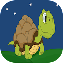 Turtles Run icon