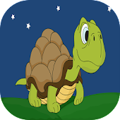 Turtles Run