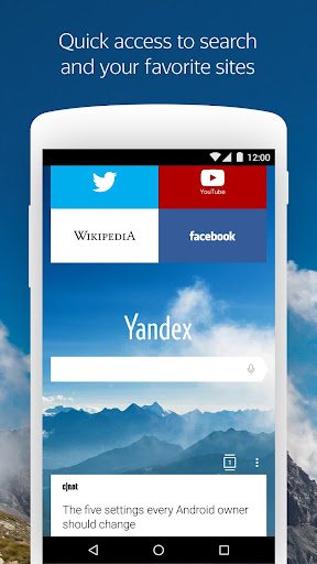 Yandex Browser with Protect screenshot 1