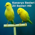 Kanarya Sesleri, Zil Sesler HD icon