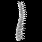 OsteoAlarm icon
