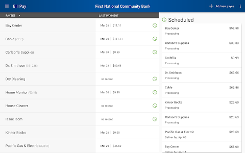 First National Community Bank screenshot 8