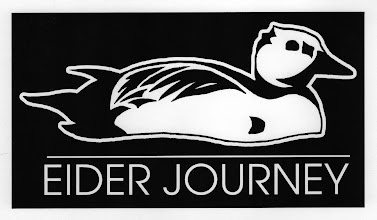 """Photo: Izembek NWR """"Eider Journey"""": tshirt logo design"""