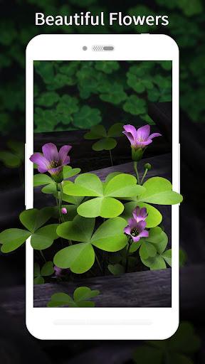 3D Flowers Live Wallpaper HD 1.4.0 screenshots 3