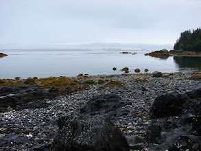 Photo: View from my campsite on Whitney Island in Stephens Passage.
