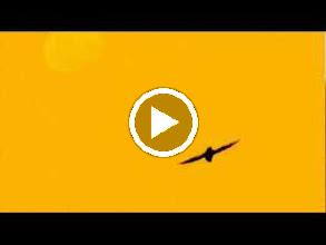 Video: A. Vivaldi  Armida (RV 699-A) - I III Aria [Armida]  A detti amabili, misti sospiri -