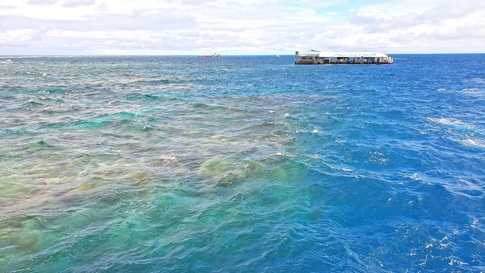 VISITAR CAIRNS | 50 Coisas para fazer quando visitar a Grande Barreira de Coral da Austrália