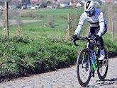 Ook Alaphilippe en Van Avermaet gaan de Ronde van Vlaanderen verkennen