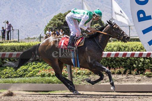 Win Here (Breathless Storm) se adjudica el Clásico Julio Castro Ruiz (G3-2000m-Arena-HCH).