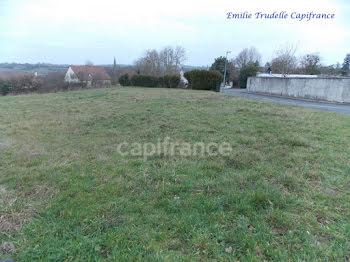terrain à Savigny-sur-Braye (41)