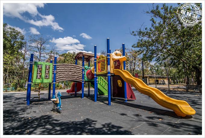 大東溼地公園兒童溜滑梯