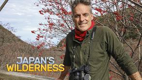 Japan's Wilderness thumbnail