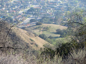 Photo: Zoomed-in view toward the children's forest section of natural space stewarded by the Glendora Community Conservancy. It was spared from the Colby Fire which would come in two weeks.
