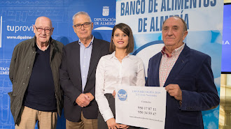 Representantes de las instituciones en Diputación Provincial