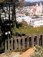 Photo: View from the top of the Hidden Garden Steps site (16th Avenue, between Kirkham & Lawton streets, in San Francisco's Inner Sunset District) after neighborhood volunteers and City and County of San Francisco Department of Public Works (DPW) Bureau of Streets and Enviromental Services Tree & Landscape Division colleagues worked side by side on Saturday, August 10, 2013 to install rock terracing, additional succulents, and California native plants provided by neighbors and DPW. These collaborative volunteer-driven community-based efforts are among projects underway to prepare for installation of the 148-step ceramic-tile mosaic designed and created by Hidden Garden Steps artists Aileen Barr and Colette Crutcher. For more information about the Hidden Garden Steps, please visit http://hiddengardensteps.org and/or follow us on Twitter (@gardensteps), Facebook (Hidden Garden Steps), and Google+.
