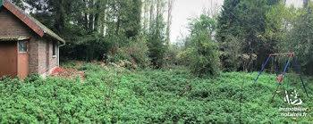 terrain à Ailly-sur-Somme (80)