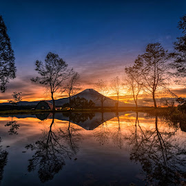 Mt. Fuji with big trees and lake at sunrise in Fujinomiya, Japan by Nuttawut Uttamaharach - Landscapes Mountains & Hills ( big, forest, sunrise, japan, fujinomiya, scenery, twilight, scene, spring, cloud, mountain, view, japanese, season, sunny, landmark, park, sky, blossom, natural, reflection, nature, mt, cool, tree, clear, peak, water, morning, outdoor, blue, light, background, snow, sunset, autumn, travel, lake, fuji, landscape )
