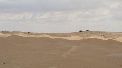 Photo: pasy słońca na pustyni