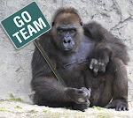 Go Team Gorilla -right
