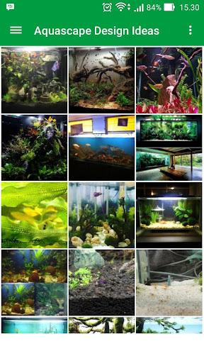 1000+ Aquascape Design Ideas
