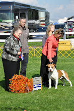 Photo: Regional Specialty 2009. BOW: Daydreamer's California Love