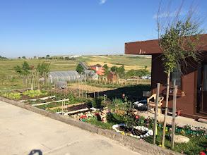 Photo: 31 Mayıs 2015 itibariyle Hobi Bahçem #2