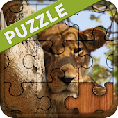 Animal Puzzles Games