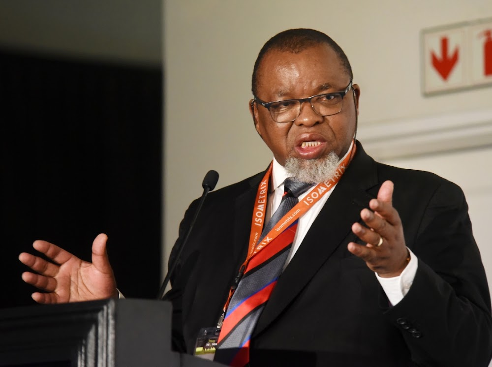 Gwede Mantashe will not commit to renewable energy time frame - Business Day