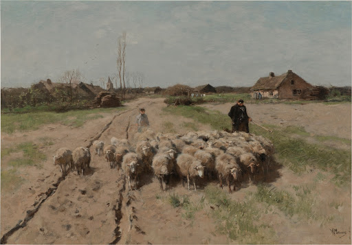 Sheep in Landscape