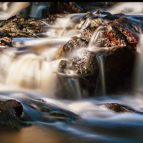 Stream by Morten Johnsrud - Nature Up Close Water ( sony, hedmark, stream, a6000, norge, norway, river )