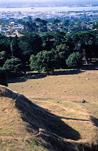 Photo: Auckland, from One Tree Hill