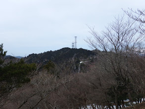 左に高円山