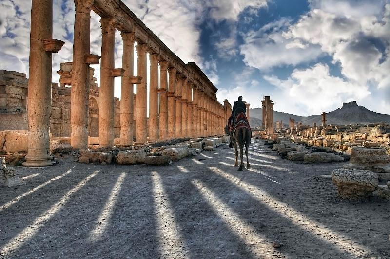 Palmyra di tatiana_marcella_lovera