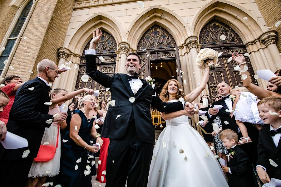 Wedding photographer Milan Lazic (wsphotography). Photo of 11.11.2019