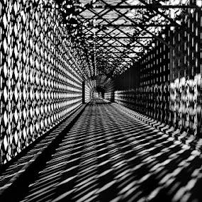 by Mirek. Mirek. - Buildings & Architecture Bridges & Suspended Structures ( tczew )