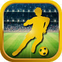 WORLD SOCCER TOURNAMENT 3D icon