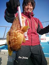 Photo: 根魚のキジハタでした。