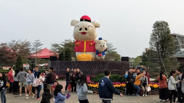 溪州公園- 2019 花在彰化