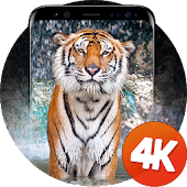 Animals Wallpapers 4K Android APK Download Free By Ultra Wallpapers