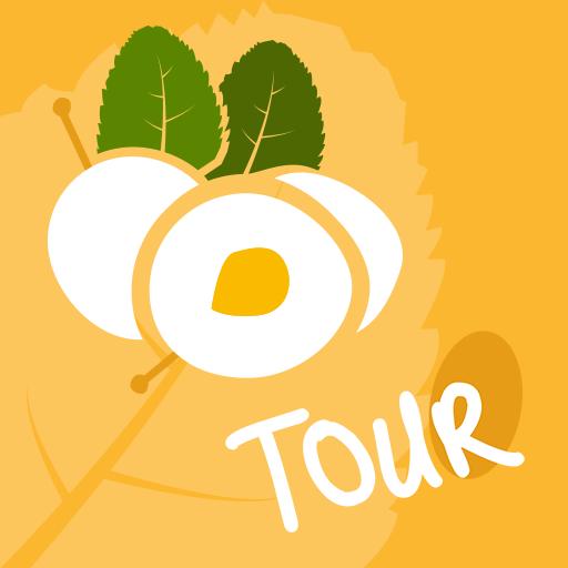 Metz Tour