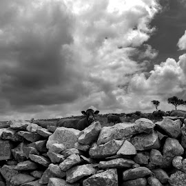 Touch the sky by Gil Reis - Black & White Landscapes ( places, nature, hills, stones, travel, life )