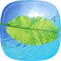 Nature Live Wallpaper Free icon