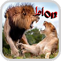 Nature Lion Wallpaper icon