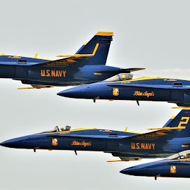 Diamond Formation by Benito Flores Jr - Transportation Airplanes ( f-18, pilots, diamond, blue, navy, yellow, texas, formation, hornet )